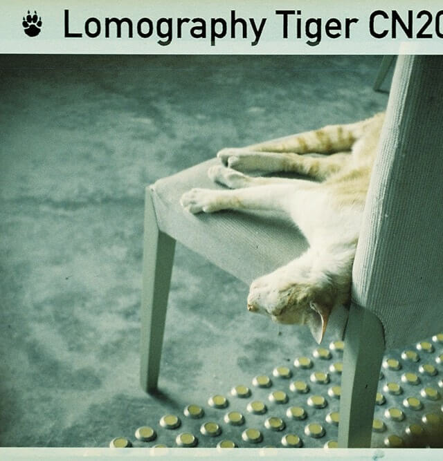 Lomography_Color_Tiger_110_3_pack