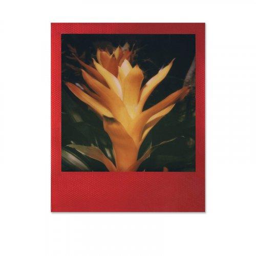 Polaroid_Originals_Color_Film_600_Metallic_Red_Frame_Edition