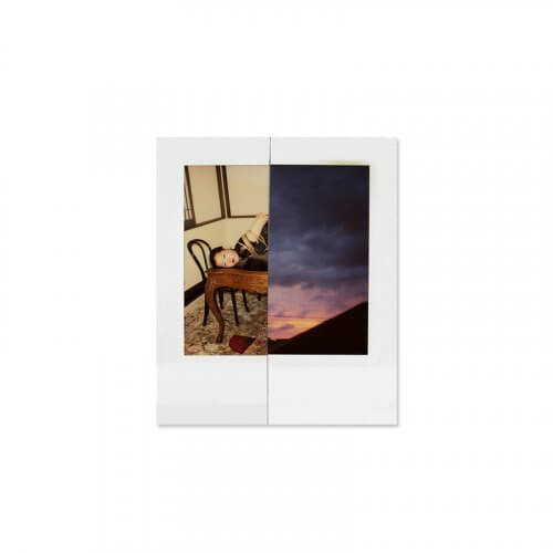 Nobuyoshi-Araki-Polarnography